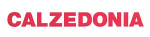 Calzedonia eshop logo